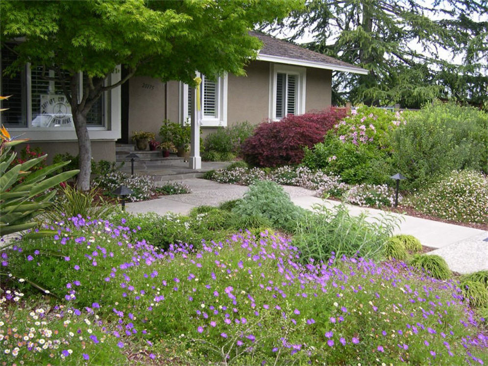 Lawnless front yard for Front garden plant ideas